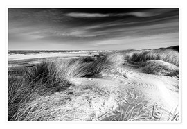 Plakat Baltic sea dunes (monochrome)