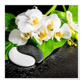 Plakat Spa arrangement with white orchid