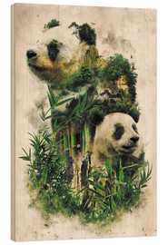 Obraz na drewnie  The Giant Panda - Barrett Biggers