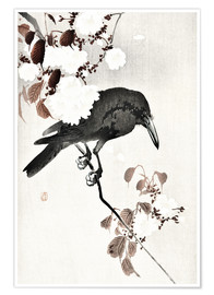 Plakat Crow and Cherry Blossoms