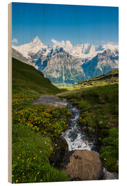 Obraz na drewnie  Mountain panorama with Schreckhorn and Fiescherhorn  View from First, Grindelwald, Switzerland - Peter Wey