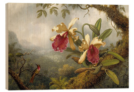 Obraz na drewnie  Orchids and hummingbird - Martin Johnson Heade