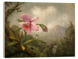 Obraz na drewnie  Orchid and Hummingbird - Martin Johnson Heade
