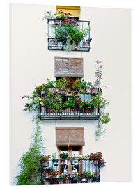 Obraz na PCV  Facade with balconies full of flowers in Valencia