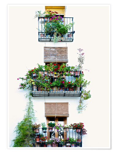 Plakat Facade with balconies full of flowers in Valencia