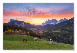 Plakat View into the Villnöss Valley in South Tyrol at sunrise