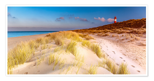 Plakat Dunes at the North Sea