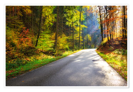 Plakat Road through autumn forest