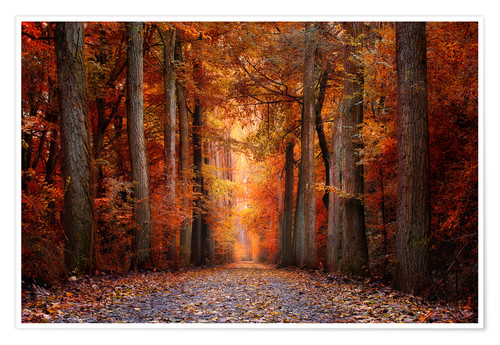 Plakat Red Forest