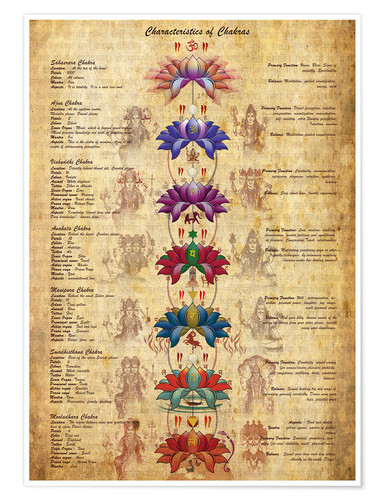 Plakat Meaning of the chakras