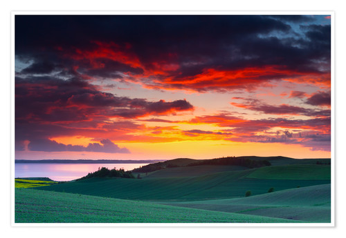 Plakat Rolling green hills and lake at sunset