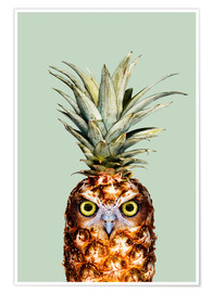 Plakat  Pineapple Owl - Jonas Loose