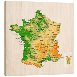 Obraz na drewnie  Map of France