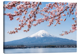 Obraz na płótnie  Mountain Fuji and cherry blossom at lake Kawaguchiko, Japan - Jan Christopher Becke