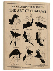 Obraz na drewnie  The Art of Shadows - Mary Urban
