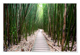 Plakat  Trail through the bamboo forest - Pacific Stock