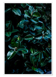 Plakat Dark Leaves 4