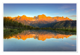 Plakat Alpenglow on the rose garden in the Dolomites in South Tyrol