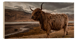 Obraz na drewnie  Highland cattle - Art Couture