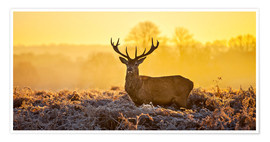 Plakat  Deer in the autumn forest - Art Couture